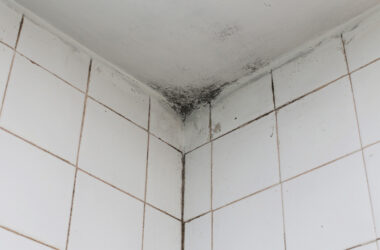 Mold on bathroom ceiling and wall