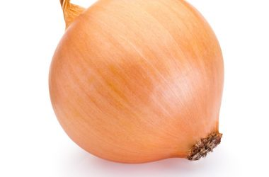 Ripe quercetin rich onion isolated on white background