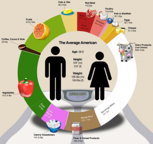 What the Average American Eats Infographic