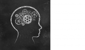 Head with cogs and wheels drawn on a chalkboard representing memory and focus