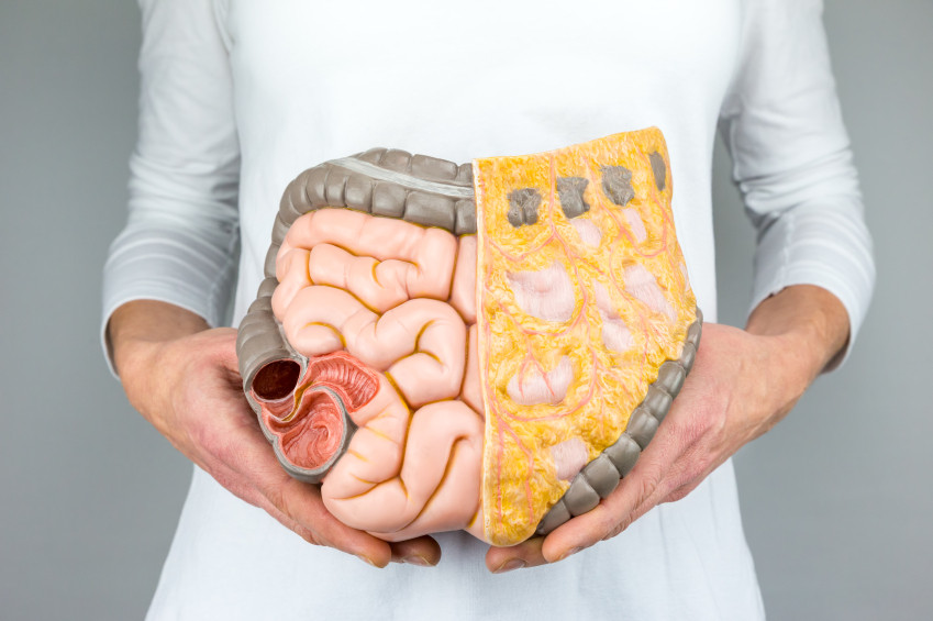 At Risk For Colon Cancer Find Out Colon Cancer Symptoms And Take The Quiz