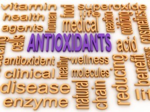 Antioxidants word cloud 3D illustration