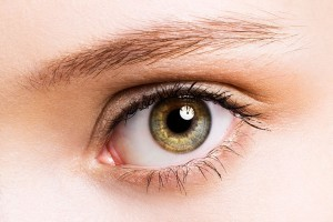 Healthy eye not suffering from macular degeneration vision loss