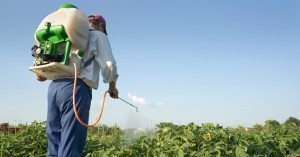 Man spraying food crops with pesticides