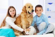 Two cute children sitting down, enjoying time with pets, girl hugs golden retriever dog and boy embraces cat.