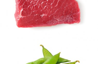 raw organic grass fed beef versus soy