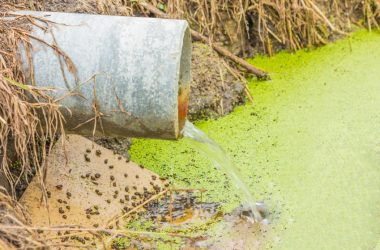 toxic water laced with pesticides
