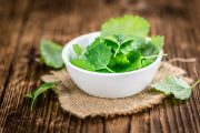 A bowl of lemon balm leaves which could help reduce insulin resistance