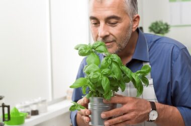 Man holding a basil plant which can boost circulation