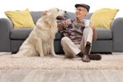 Older man with dog is getting health benefits from adopting a pet