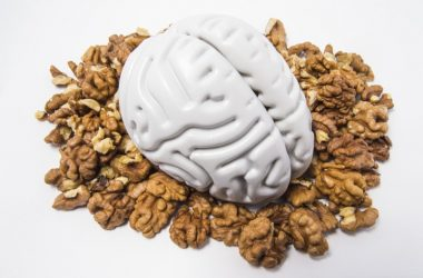 Model of human brain sitting on a pile of walnuts to illustrate depression