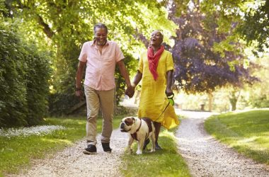 Senior couple walking and getting in their steps with pet bulldog
