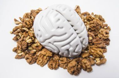 Human brain sitting on a pile of walnuts to illustrate fighting cognitive decline