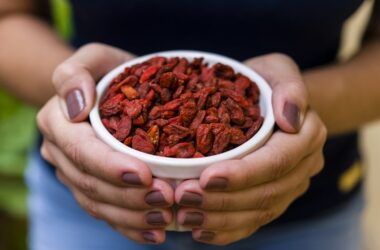 Close up of hands holding a white bowl with goji berries